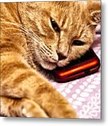 On The Phone Metal Print