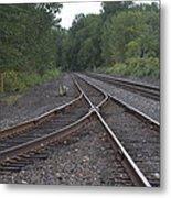 On The Rail Metal Print