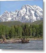 On The Snake River Metal Print