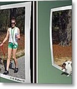 On The Trail - Gently Cross Your Eyes And Focus On The Middle Image That Appears Metal Print