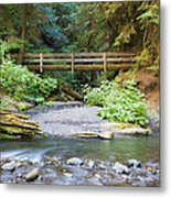 On The Trail To Marymere Metal Print