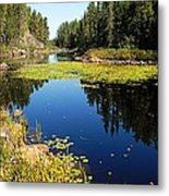 On The Way To East Lunch Lake Metal Print