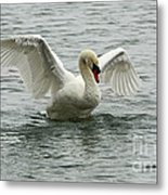 On The Wings Of A Swan Metal Print