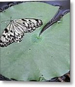 Once Upon A Lily Metal Print