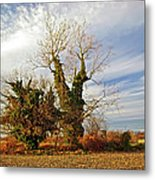 Once Was Home Metal Print
