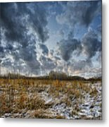 One Autumn Day Metal Print by Vladimir Kholostykh