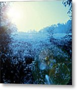 One Blue Morning Metal Print