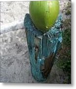 One Coconut Metal Print