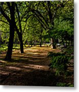 One Day In The City Park Metal Print