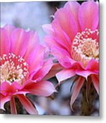 One Day Wonder Metal Print