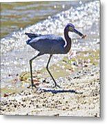 One Fiddle Down Metal Print