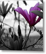 One In The Bunch Metal Print