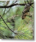 One In The Midst Metal Print