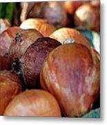 Onions At A Roadside Market Metal Print by Toni Hopper