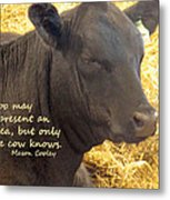 Only Cows Know Metal Print