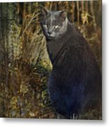 Only The Lonely Metal Print