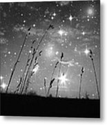 Only The Stars And Me Metal Print