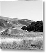 Open Country Metal Print