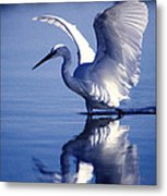 Open Over Blue Metal Print