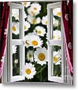 Open Windows Onto Large Daisies Metal Print