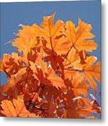 Orange Autumn Leaves Art Prints Blue Sky Metal Print