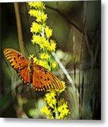 Orange Butterfly On Yellow Wildflower Metal Print