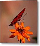 Orange Butterfly Orange Flower Metal Print