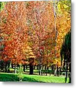 Orange Colored Trees Metal Print