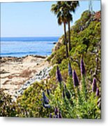 Orange County California Coastline Photo Metal Print