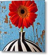 Orange Gerbera Mum Metal Print