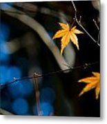 Orange Leaf On A Tree In Winter Setting Metal Print