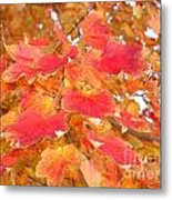 Orange Leaves 2 Metal Print