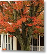 Orange Leaves And Pumpkins Metal Print