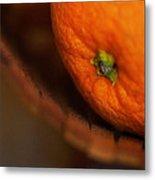 Orange Sunshine Metal Print