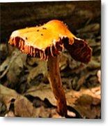 Orange Wild Mushroom Metal Print