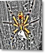 Orb Spider Metal Print