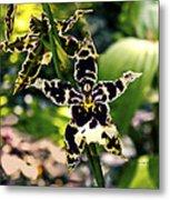 Orchid Study Metal Print