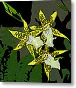 Orchid Trilogy Metal Print