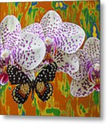 Orchids With Speckled Butterfly Metal Print