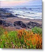 Oregon Coast Wildflowers Metal Print