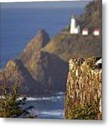 Oregon, United States Of America Heceta Metal Print