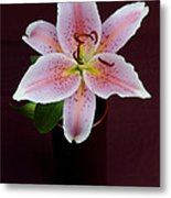 Oriental Lilly Metal Print
