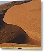 Oryx II Metal Print by Christian Heeb