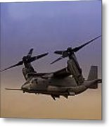 Osprey In Flight I Metal Print
