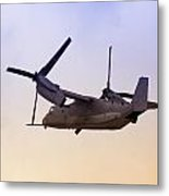 Osprey In Flight Iv Metal Print