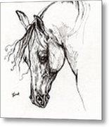 Ostragon Polish Arabian Horse 1 Metal Print