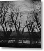 Other Side Of The Wind Metal Print