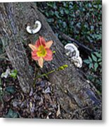 Out Of Decay Metal Print
