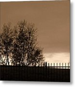 Out Of Reach Metal Print