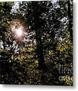 Out Of The Darkness He Calls Metal Print